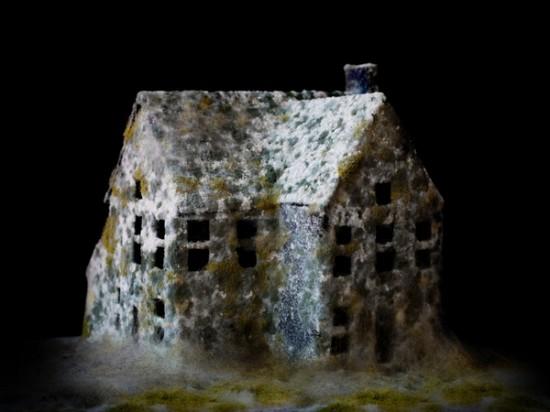 Những ngôi nhà hoang... rởm - 1