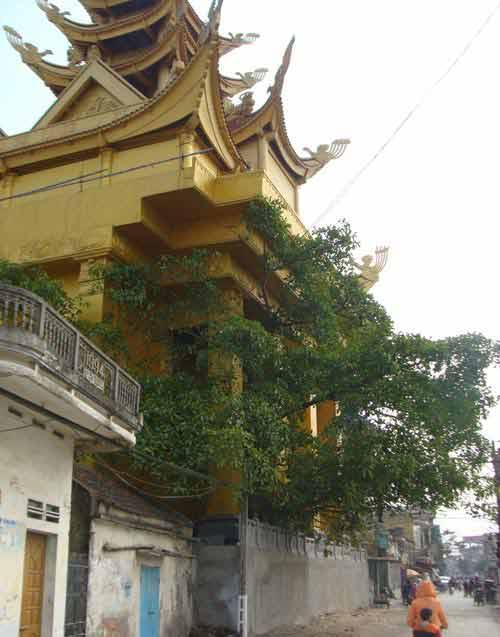 Truyền kỳ lăng mộ lớn nhất Việt Nam - 2