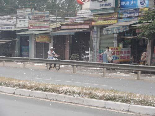 """Đồng Nai: """"Tuyết"""" rơi trên trên quốc lộ - 5"""
