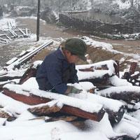 Chùm ảnh: Tuyết rơi đầy ở Lào Cai