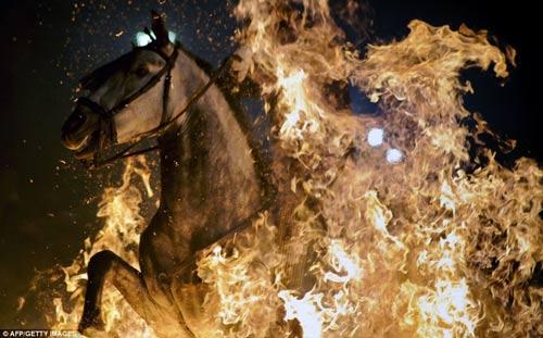 """Lễ hội """"cưỡi ngựa phi qua lửa"""" - 2"""