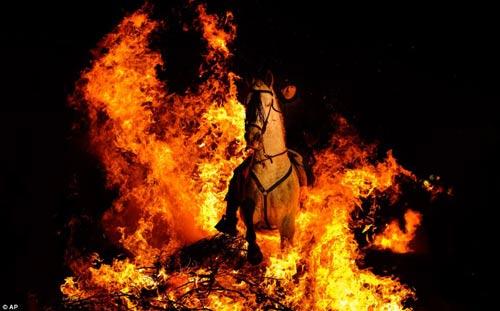 """Lễ hội """"cưỡi ngựa phi qua lửa"""" - 3"""