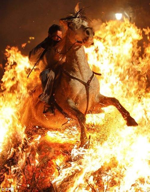 """Lễ hội """"cưỡi ngựa phi qua lửa"""" - 5"""