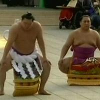 Phong tục đón tết với Sumo ở Nhật Bản