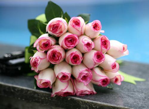 10 loài hoa đẹp nhất thế giới - 10