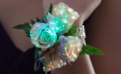 Kỳ diệu: Những bông hoa phát sáng, Phi thường - kỳ quặc, chuyen la,chuyen la co that,chuyen la the gioi,hoa phat sang,tin tuc