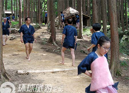 """Khu rừng """"tắm tiên"""" tại Hàn Quốc - 5"""