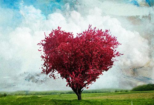 Thơ tình: Nơi tình yêu bắt đầu - 1