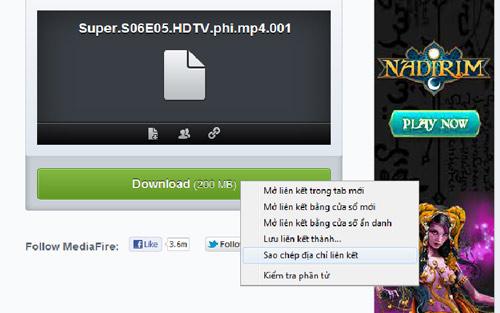 Cách download lại trên Mediafire bằng IDM khi đứt giữa chừng - 6