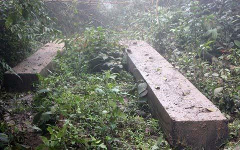 Vụ phá rừng lớn chưa từng có tại Hà Tĩnh - 3