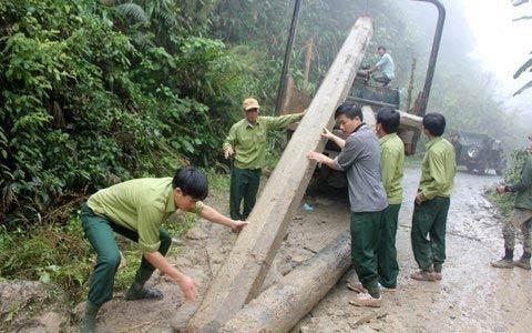 Vụ phá rừng lớn chưa từng có tại Hà Tĩnh - 4