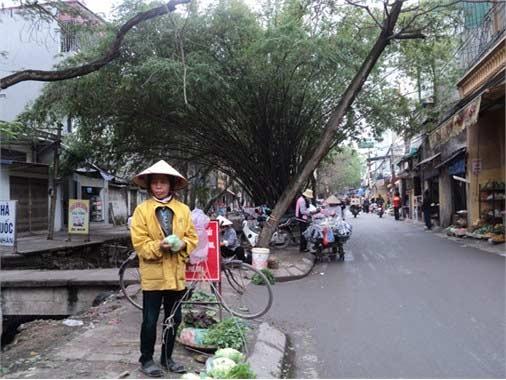"""Nơi biển cấm bị """"coi thường"""" ở Hà Nội! - 5"""