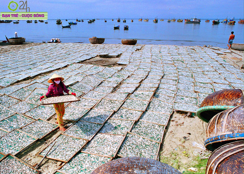 Những bức ảnh tuyệt đẹp của người Việt trẻ - 10