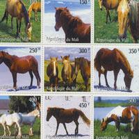 Kỷ lục Việt Nam: Bộ sưu tập tem ngựa nhiều nhất