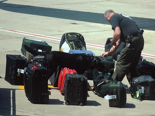 Qui định hành lý mang theo