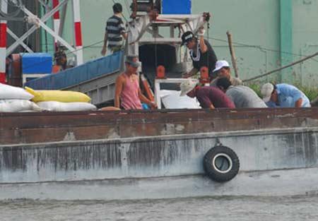 Dồn dập hợp đồng xuất khẩu gạo - 1