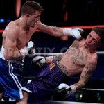 Thể thao - Video: Những cú knock-out năm 2012
