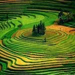 Du lịch - 4 mùa Lào Cai đẹp sững sờ