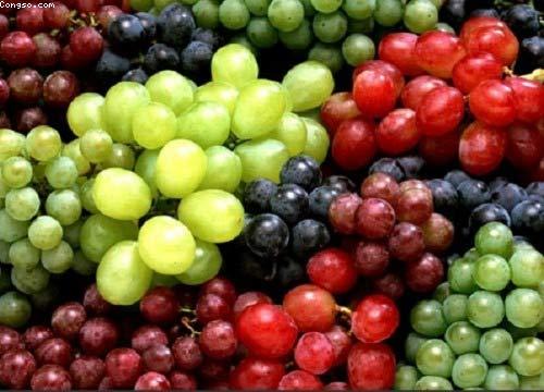 Bí quyết loại bỏ hóa chất ở trái cây - 2