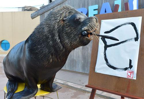 Ảnh đẹp: Sư tử biển viết thư pháp - 11