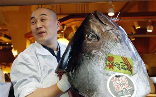 Sốc: Cá ngừ đắt nhất TG giá 37 tỷ đồng - 1