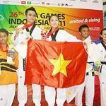 Thể thao - TTVN năm 2013: Trọng tâm là SEA Games 27