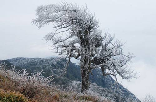 4 địa điểm có băng tuyết tuyệt đẹp ở Việt Nam - 10
