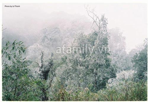 4 địa điểm có băng tuyết tuyệt đẹp ở Việt Nam - 9