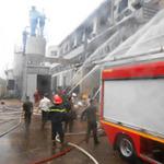 Tin tức trong ngày - TP.HCM: Nguyên nhân vụ cháy ở khu chế xuất