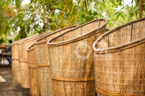 Xem trước đường hoa tết Nguyễn Huệ - 15