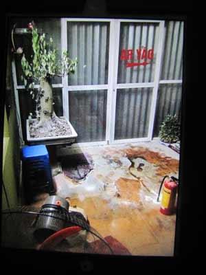 Tiệm cầm đồ bị đổ xăng đốt lúc nửa đêm - 1