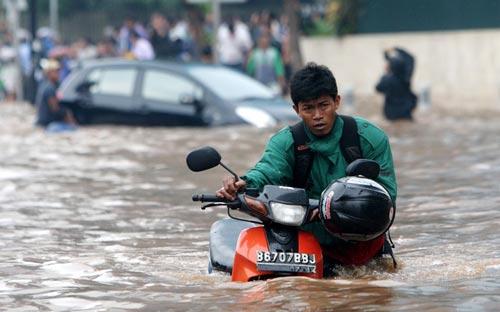 """Chùm ảnh: Lũ """"nhấn chìm"""" thủ đô Indonesia - 13"""