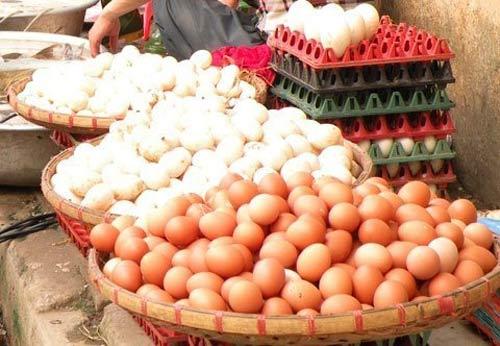 Điều tra xử lý việc tăng giá trứng gà - 1