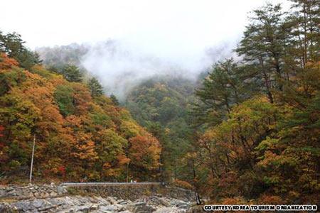 7 ngọn núi kỳ vĩ của Hàn Quốc - 2