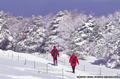 7 ngọn núi kỳ vĩ của Hàn Quốc - 8