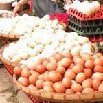 Thị trường - Tiêu dùng - Điều tra xử lý việc tăng giá trứng gà