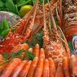 Sức khỏe đời sống - Những ai nên tránh ăn hải sản?