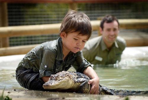 Bé trai 3 tuổi thích chơi với cá sấu - 1
