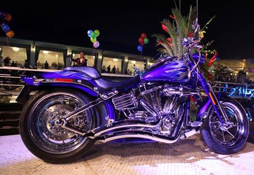 Dàn siêu xe Harley 'xoắn' ga vang trời - 10