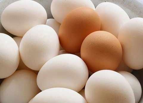 Hết sốt giá trứng gà - 1