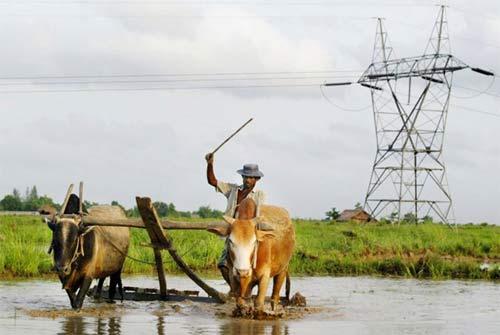 """Khám phá các """"mỏ vàng"""" của Myanmar - 11"""