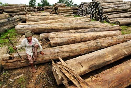 """Khám phá các """"mỏ vàng"""" của Myanmar - 3"""