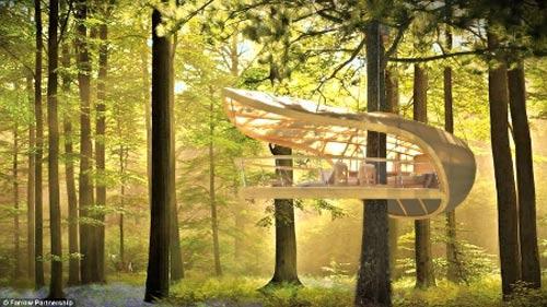 Độc đáo khu nghỉ dưỡng 5 sao... trên cây - 1