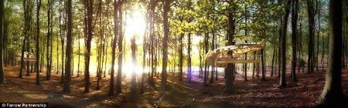 Độc đáo khu nghỉ dưỡng 5 sao... trên cây - 4