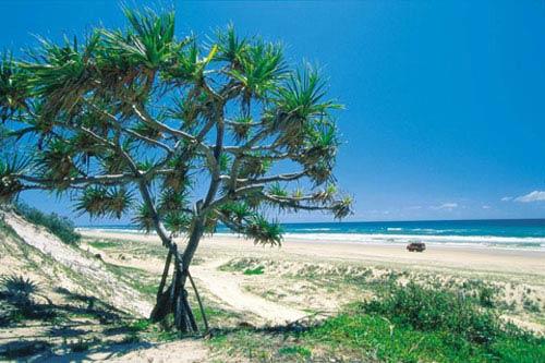 Khám phá đảo cát lớn nhất thế giới - 2
