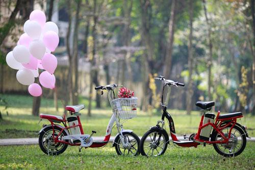 Xe đạp điện có thể đi 80 km tại Hà Nội - 4