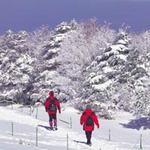 Du lịch - Hàn Quốc và những ngọn núi mùa thu đông