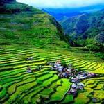 Du lịch - Choáng ngợp ruộng bậc thang kỳ vĩ ở Philippines
