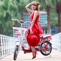 Xe đạp điện HKBike đi 80km hết 4000 đồng
