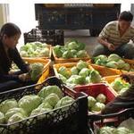 Thị trường - Tiêu dùng - Giá thịt giảm, giá trái cây tăng nhẹ